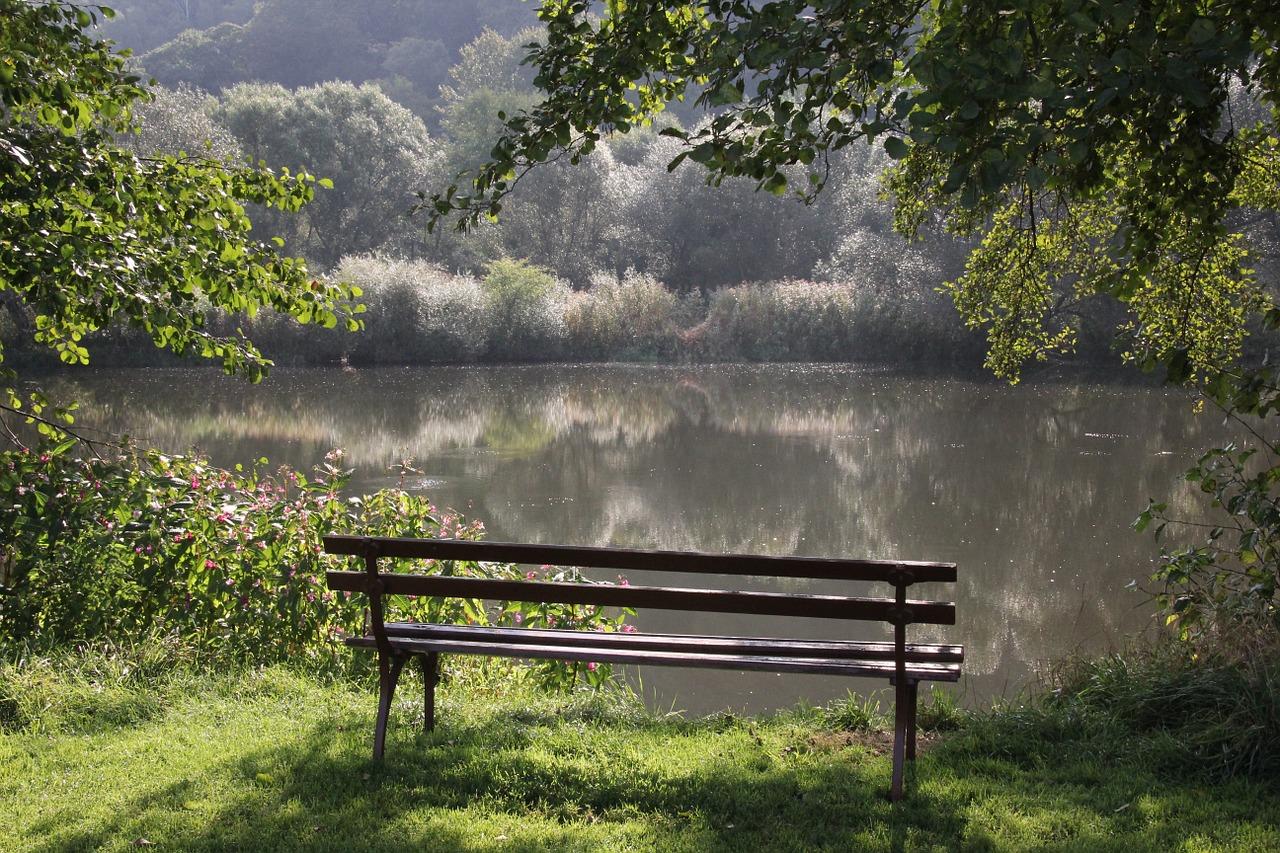 ベンチと湖の写真