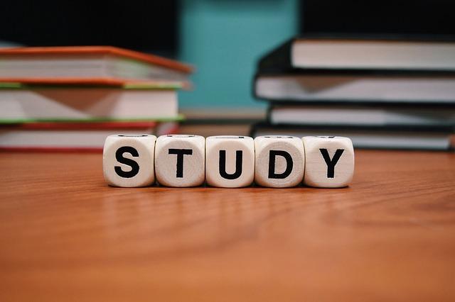 studyの文字のサイコロ